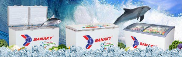 Tủ bảo quản đông Sanaky