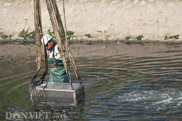 """Sông Tô Lịch hết mùi trong 3 ngày: Khả thi hay chỉ là """"nổ""""?-2"""