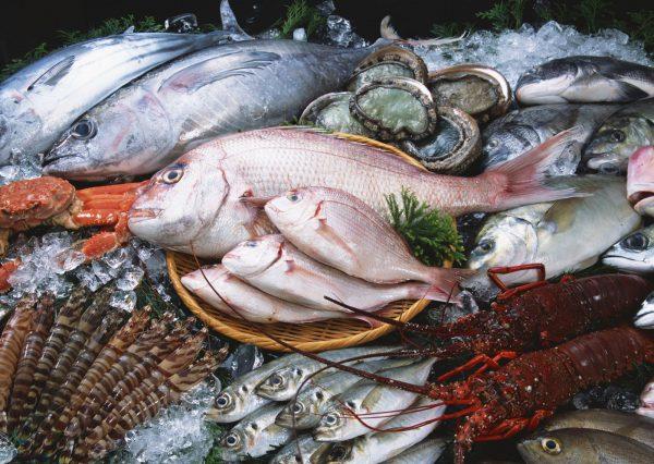cách bảo quản thịt cá trong tủ đông