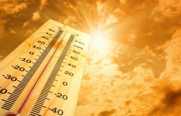 Đừng chủ quan với sốc nhiệt nhất là vào mùa hè