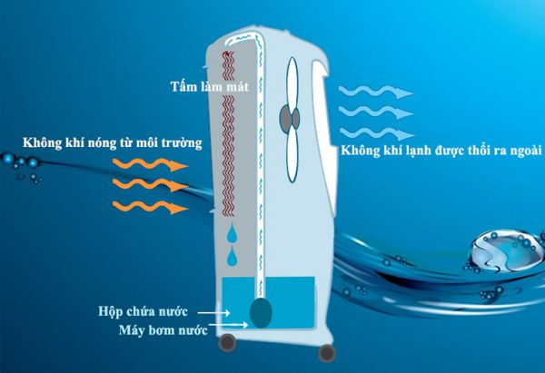 tìm hiểu quạt hơi nước