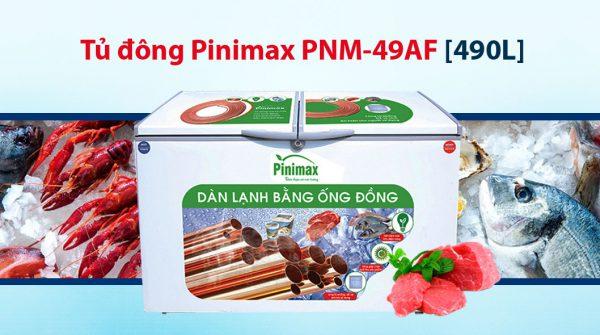 Tủ đông Pinimax 490 lít PNM-49AF