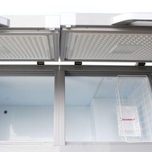 tủ đông sanaky 2 ngăn