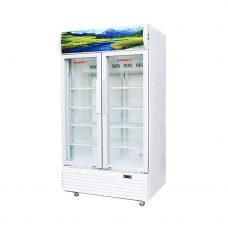 Tủ mát Sanaky VH-6009HP